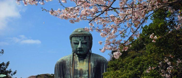 Japan Study Tour